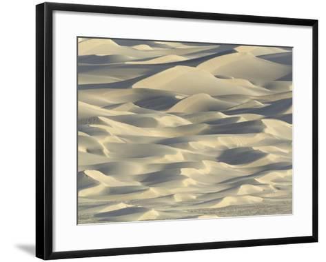 Sand dunes in Death Valley National Park-John Eastcott & Yva Momatiuk-Framed Art Print