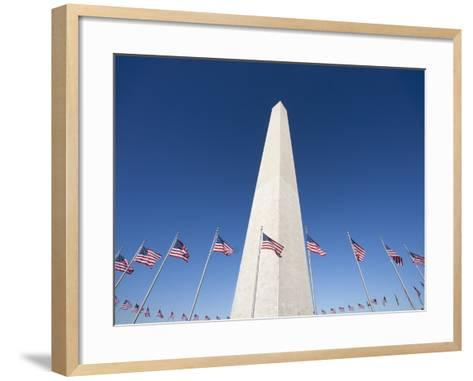Washington Monument surrounded by American flags-Jos? Fuste Raga-Framed Art Print