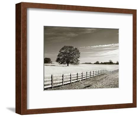 Newnan-John Kuss-Framed Art Print