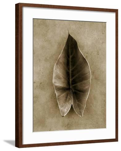Elephant Ear-John Kuss-Framed Art Print