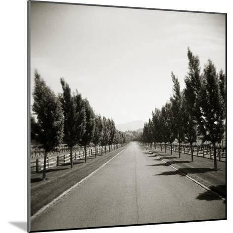 Napa Valley-John Kuss-Mounted Photographic Print