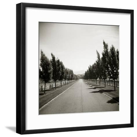 Napa Valley-John Kuss-Framed Art Print