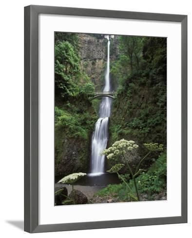 USA, Oregon, Columbia River Gorge Area, Scenic Waterfalls, Multonomah Falls-Chris Cheadle-Framed Art Print