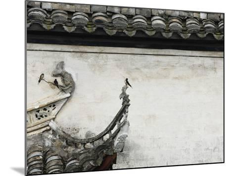 Birds on tiled roof in Xidi, China-Yang Liu-Mounted Photographic Print