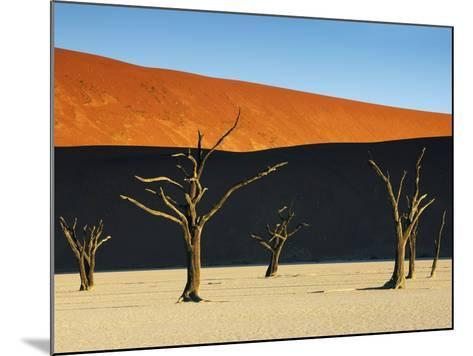 Bare trees at Dead Vlei-Frank Krahmer-Mounted Photographic Print