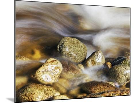 Water rushing past river stones-Frank Krahmer-Mounted Photographic Print