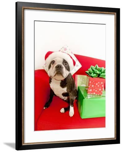 Dog wearing Santa Claus hat next to gifts--Framed Art Print