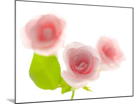 Pink rose-Kiyoshi Miyagawa-Mounted Photographic Print