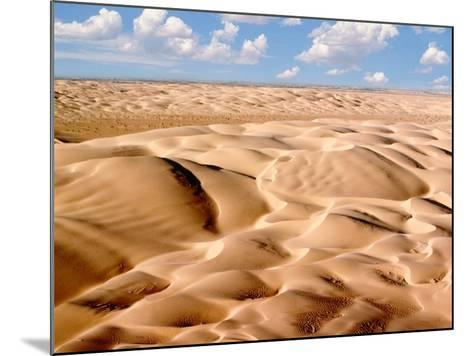 Desert Landscape-Craig Aurness-Mounted Photographic Print