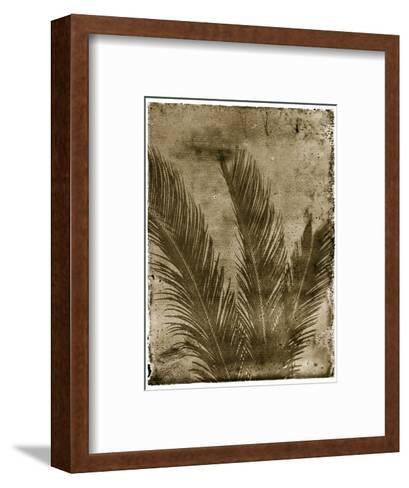 Sago Palm-John Kuss-Framed Art Print