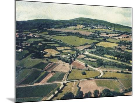 Vineyards-Jennifer Kennard-Mounted Photographic Print
