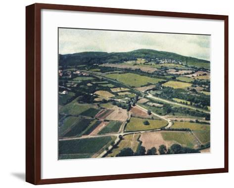 Vineyards-Jennifer Kennard-Framed Art Print