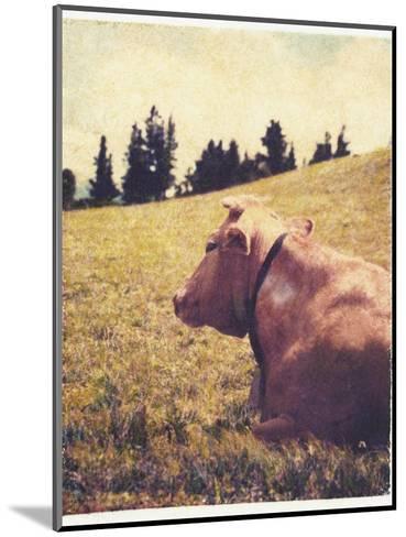 Alpine Cow No.2-Jennifer Kennard-Mounted Photographic Print