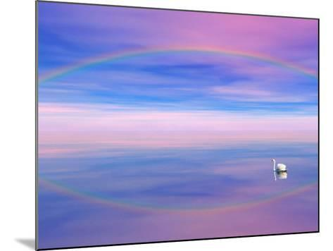 Rainbow Reflecting over Swan-Cindy Kassab-Mounted Photographic Print