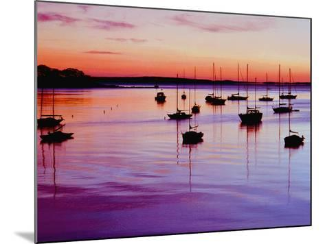 Sailboats Anchored in a Harbor-Cindy Kassab-Mounted Photographic Print