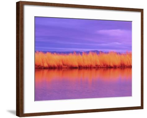 Sunset on Summer Lake-Robert Marien-Framed Art Print