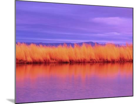 Sunset on Summer Lake-Robert Marien-Mounted Photographic Print