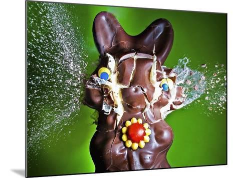 Dum Dum Bunny-Alan Sailer-Mounted Photographic Print