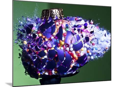 Christmas Surprise-Alan Sailer-Mounted Photographic Print