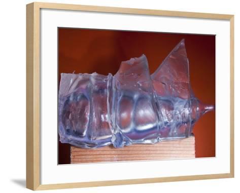 Rubber Recoil-Alan Sailer-Framed Art Print