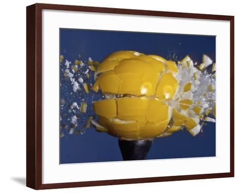 Yellow Jawbreaker Broken-Alan Sailer-Framed Art Print