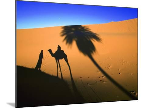 Shadow of Camel and Palm Tree-Martin Harvey-Mounted Photographic Print