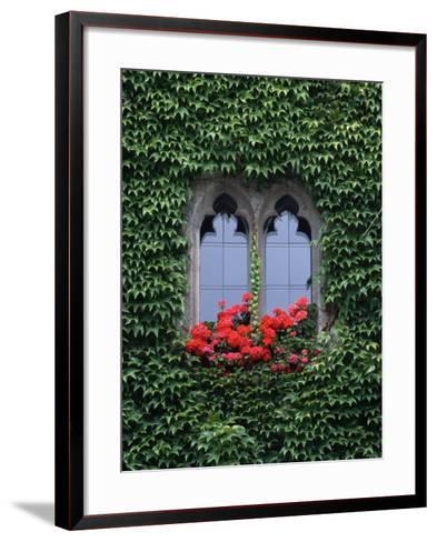 Window of Regensburg Town Hall-Adam Woolfitt-Framed Art Print