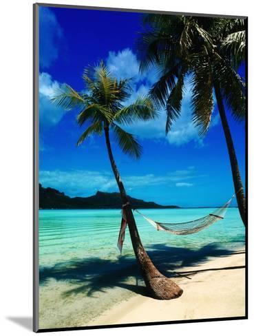 Hammock Hanging Seaside-Randy Faris-Mounted Photographic Print
