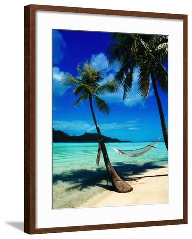 Hammock Hanging Seaside-Randy Faris-Framed Art Print