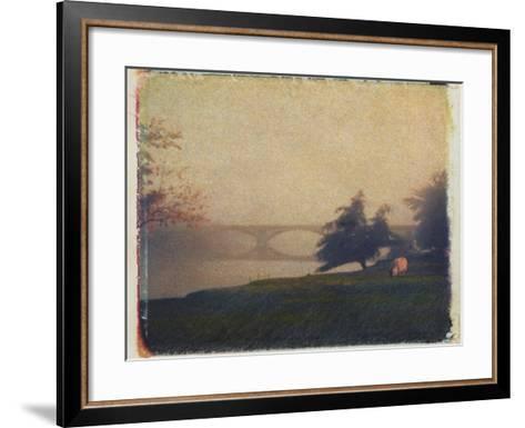 Sheep Grazing-Jennifer Kennard-Framed Art Print