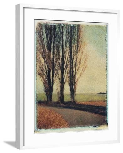 3 Poplars Late Fall-Jennifer Kennard-Framed Art Print