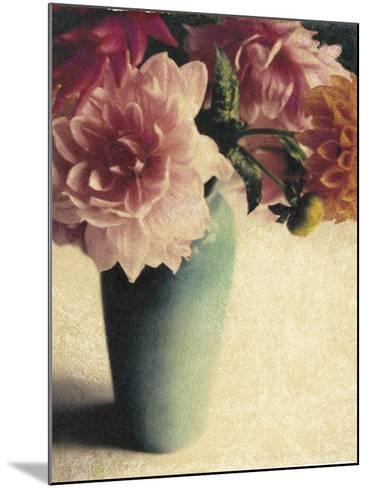 Patrick's Dahlias-Jennifer Kennard-Mounted Photographic Print