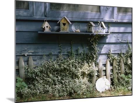 Roma's House-Kim Koza-Mounted Photographic Print