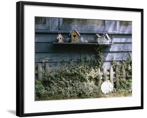 Roma's House-Kim Koza-Framed Art Print
