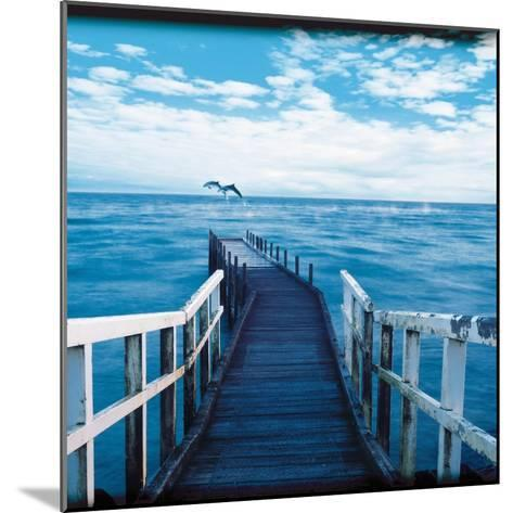 Pier and Dolphins-Colin Anderson-Mounted Photographic Print