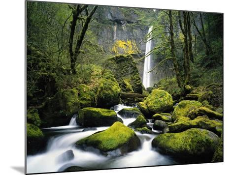 Stream Flowing over Mossy Rocks-Craig Tuttle-Mounted Photographic Print