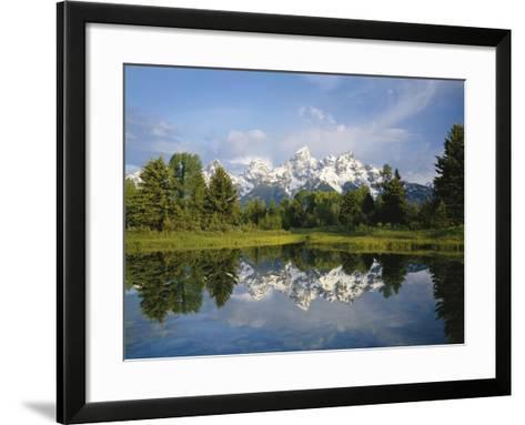 Beaver Pond with Teton Range in Distance-Craig Tuttle-Framed Art Print