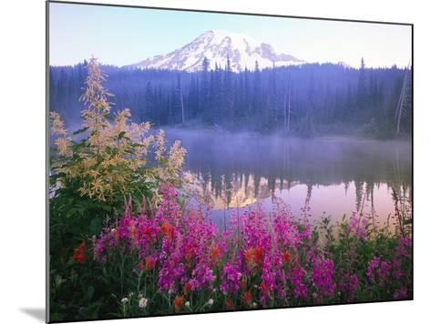 Wildflowers in Bloom by Lake on Mount Rainier-Craig Tuttle-Mounted Photographic Print