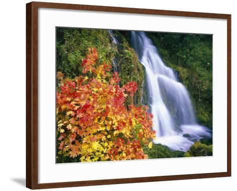 Autumn Leaves by Rushing Waterfall-Craig Tuttle-Framed Art Print