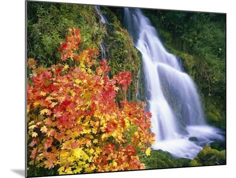 Autumn Leaves by Rushing Waterfall-Craig Tuttle-Mounted Photographic Print
