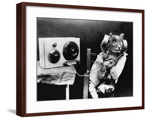Pet Radio--Framed Art Print