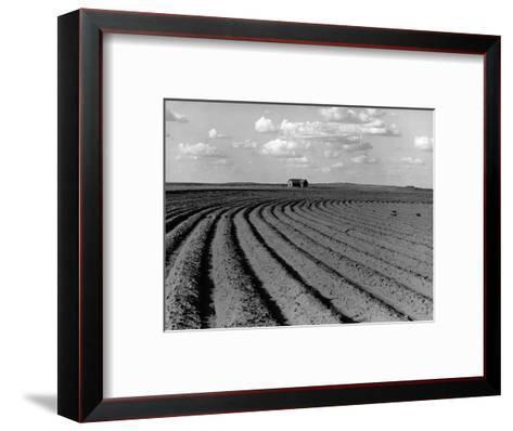 Plowed Fields on a Mechanized Cotton Farm--Framed Art Print