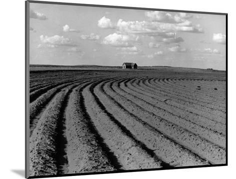 Plowed Fields on a Mechanized Cotton Farm--Mounted Photographic Print