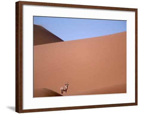 Lone Gemsbok Walking On Sand Dunes-Richard Olivier-Framed Art Print