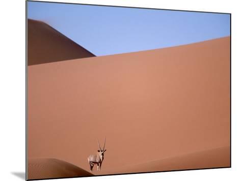 Lone Gemsbok Walking On Sand Dunes-Richard Olivier-Mounted Photographic Print