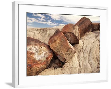 Petrified Logs-Joe McDonald-Framed Art Print