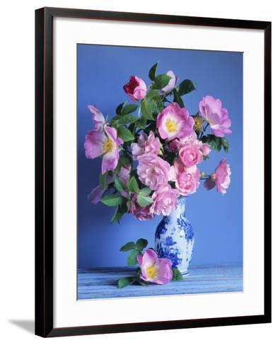 Complicata and Felicia Roses-Clay Perry-Framed Art Print