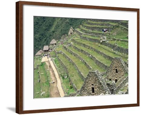 Terraced Fields at Machu Picchu-Dave G^ Houser-Framed Art Print