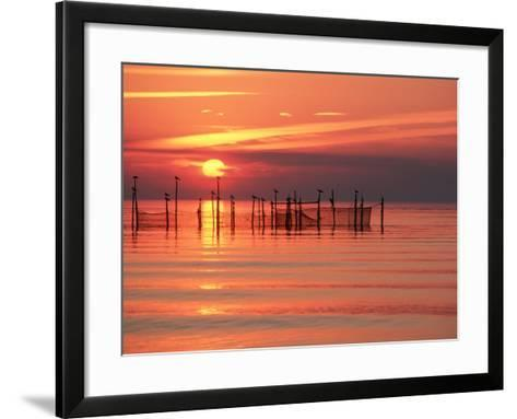 Silhouetted Fishing Net at Sunset-Lowell Georgia-Framed Art Print