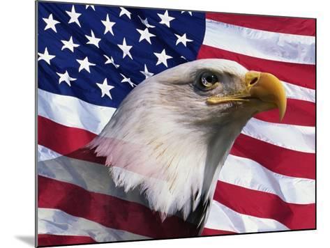 Bald Eagle and American Flag-Joseph Sohm-Mounted Photographic Print